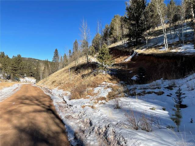 518 Willow Road, Divide, CO 80814 (#9990386) :: The Dixon Group