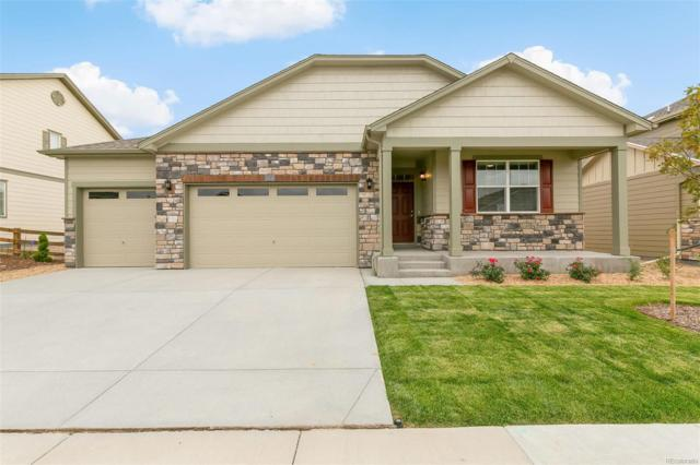 15518 Quince Circle, Thornton, CO 80602 (MLS #9991555) :: 8z Real Estate