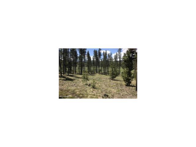 687 Gcr 513, Tabernash, CO 80478 (MLS #9991623) :: 8z Real Estate