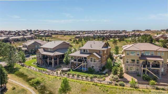 461 Backcountry Lane, Highlands Ranch, CO 80129 (#9992115) :: Kimberly Austin Properties