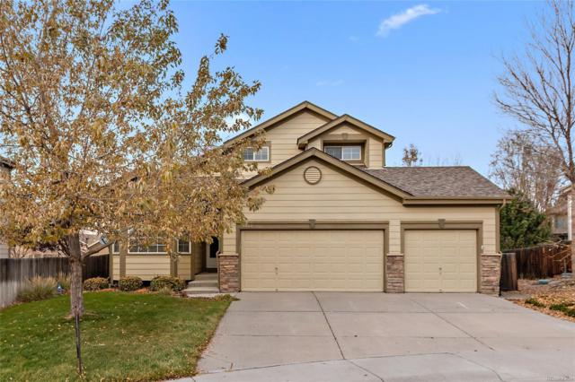 6542 Trappers Trail Avenue, Parker, CO 80134 (#9995366) :: The DeGrood Team