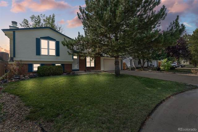 8090 W 93rd Way, Westminster, CO 80021 (MLS #9997710) :: Kittle Real Estate
