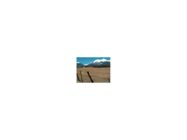 8500 Windmill Lane, Salida, CO 81201 (MLS #C209881) :: 8z Real Estate