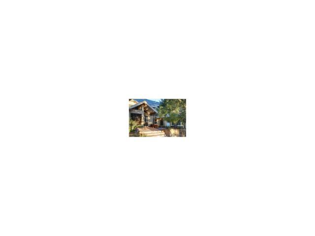 181 Hennequin Creek Dr. S, Westcliffe, CO 81252 (MLS #C223386) :: 8z Real Estate