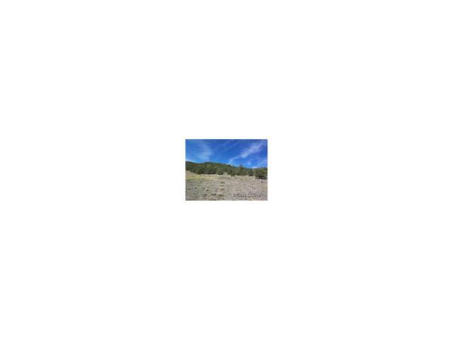 TBD Cr 271, Westcliffe, CO 81252 (MLS #C226234) :: 8z Real Estate
