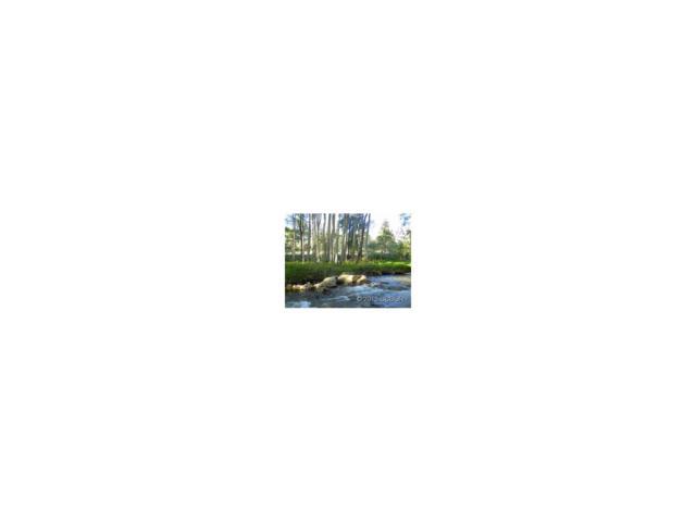 17530 Primrose Lane, Buena Vista, CO 81211 (MLS #C228012) :: 8z Real Estate