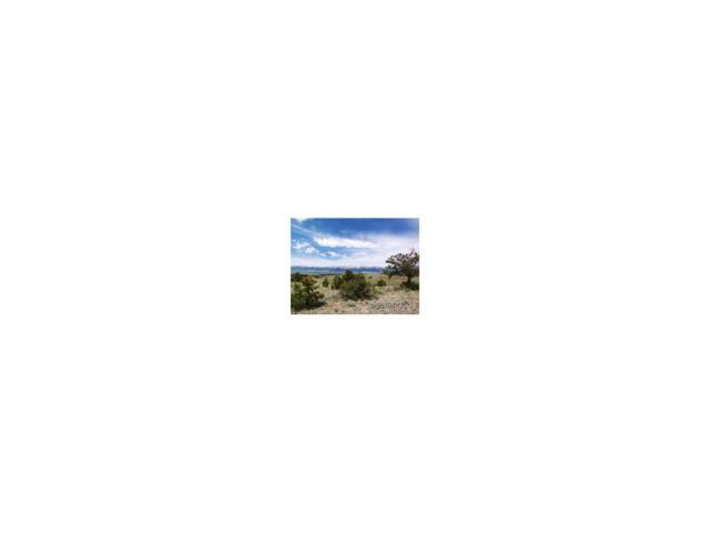 114 N. Navajo Path, Westcliffe, CO 81252 (#C232793) :: Bring Home Denver