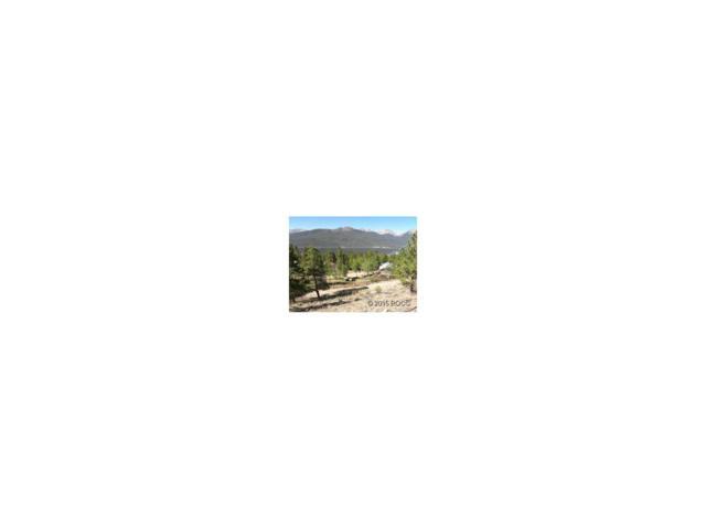 217 La Plata Peak Drive, Twin Lakes, CO 81251 (MLS #C233027) :: 8z Real Estate
