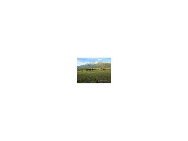 17470 Reserve Drive, Buena Vista, CO 81211 (#C233246) :: Structure CO Group