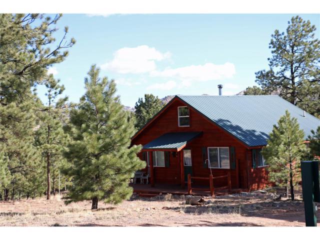238 Shoshone, Westcliffe, CO 81252 (#C233367) :: Bring Home Denver