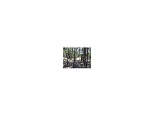 229 Gabbert Drive, Westcliffe, CO 81252 (MLS #C233688) :: 8z Real Estate