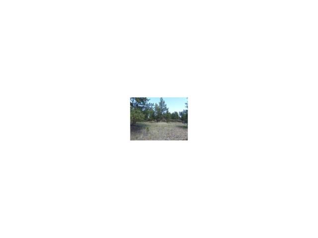 120 Gabbert Drive, Westcliffe, CO 81252 (MLS #C233690) :: 8z Real Estate