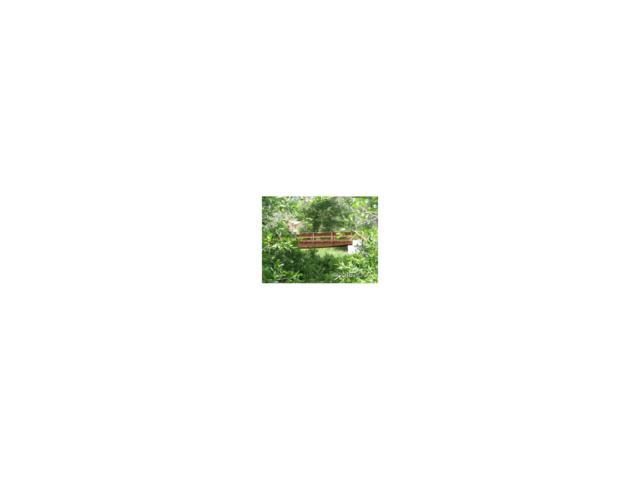 17240 Willow Tree Lane, Maysville, CO 81201 (MLS #C234160) :: 8z Real Estate