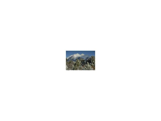 14880 Granite Parkway, Salida, CO 81201 (MLS #C234332) :: 8z Real Estate