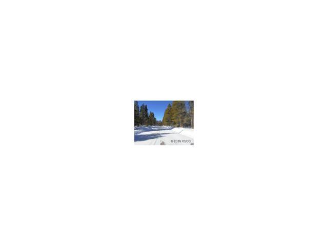 119 Rafferty, Leadville, CO 80461 (MLS #C234345) :: 8z Real Estate
