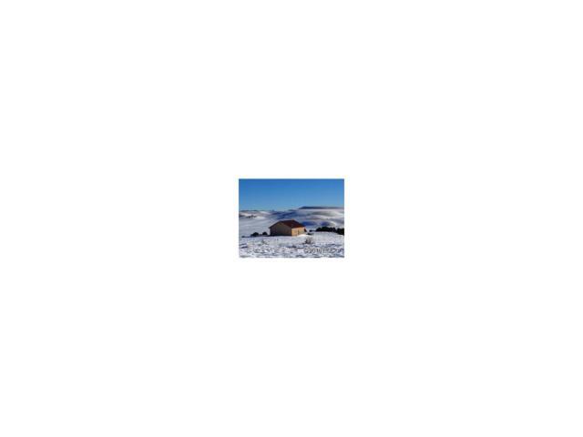 2770 Gibbs Drive, Westcliffe, CO 81252 (MLS #C234575) :: 8z Real Estate