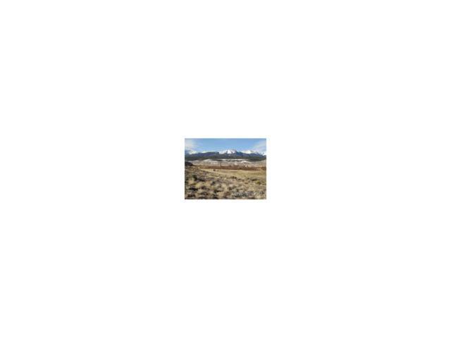 295 Cr 55, Leadville, CO 80461 (MLS #C234599) :: 8z Real Estate