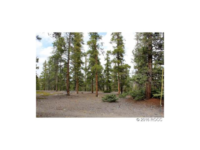 9 Lodgepole, Twin Lakes, CO 81251 (MLS #C235082) :: 8z Real Estate