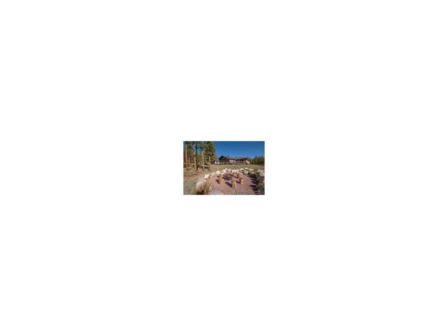 17005 Pine Grove Parkway, Buena Vista, CO 81211 (MLS #C235471) :: 8z Real Estate
