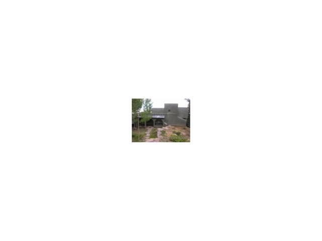 880 Burno Mountain Road, Cotopaxi, CO 81223 (MLS #C235644) :: 8z Real Estate