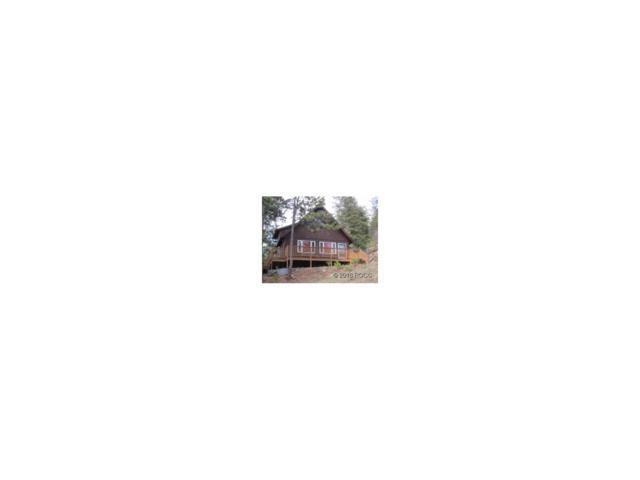 296 Bison, Cotopaxi, CO 81223 (MLS #C235834) :: 8z Real Estate