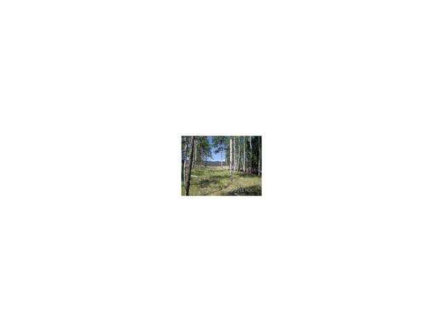 1032 Bolster Drive, Hartsel, CO 80449 (MLS #C235906) :: 8z Real Estate