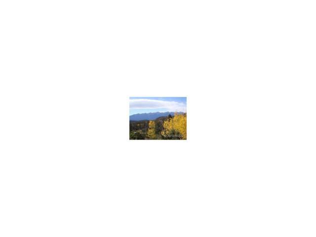 0 Nuthatch Drive, Cotopaxi, CO 81223 (#C236251) :: Hometrackr Denver