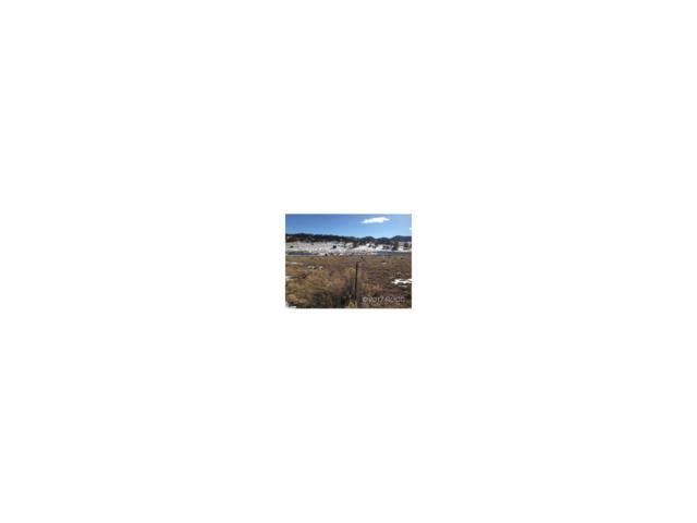 TBD Cr 265, Westcliffe, CO 81252 (MLS #C236571) :: 8z Real Estate