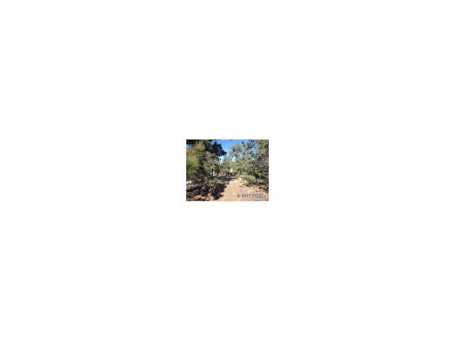 333 Aspen Circle, Hartsel, CO 80449 (MLS #C236616) :: 8z Real Estate