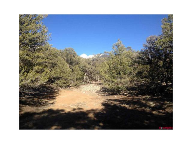 2091-2095 Lone Pine Way, Crestone, CO 81131 (#R698351) :: The HomeSmiths Team - Keller Williams