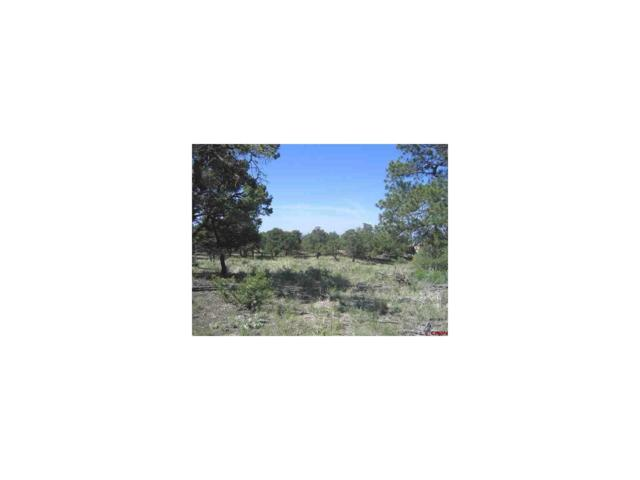 344C Palomino Way, Crestone, CO 81131 (MLS #R699868) :: 8z Real Estate