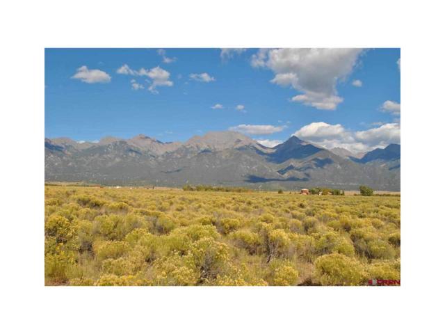 1059 Camino Del Rey, Crestone, CO 81131 (MLS #R699916) :: 8z Real Estate