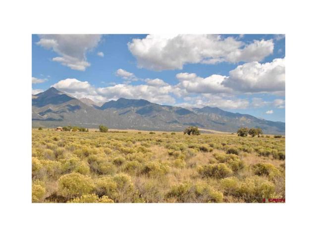 1958 Cougar Trail, Crestone, CO 81131 (MLS #R699917) :: 8z Real Estate