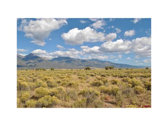 1060 Camino Del Rey, Crestone, CO 81131 (MLS #R699936) :: 8z Real Estate
