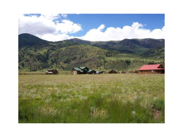 411 Mccall Drive, Creede, CO 81130 (MLS #R709286) :: 8z Real Estate