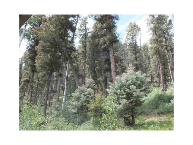 Aspen Springs, Conejos, CO 81129 (MLS #R716959) :: 8z Real Estate