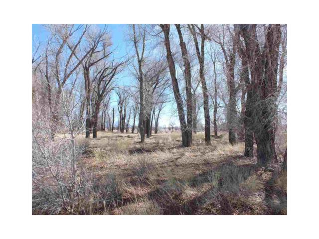 Lot 24 Cottonwoods At Cattails, Alamosa, CO 81101 (MLS #R717010) :: 8z Real Estate