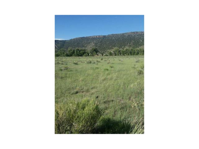 Lot 3 Conejos Trail, Antonito, CO 81120 (#R721824) :: The DeGrood Team