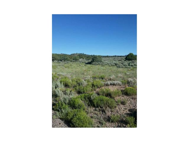 Lot 11 Conejos Trail, Antonito, CO 81120 (#R721825) :: The DeGrood Team