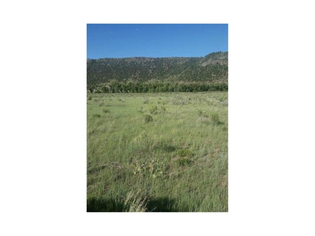 Lot 2 Conejos Trail, Antonito, CO 81120 (#R721827) :: The DeGrood Team