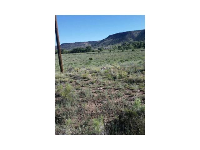 Lot 5 Mountain View Trail, Antonito, CO 81120 (MLS #R721834) :: 8z Real Estate