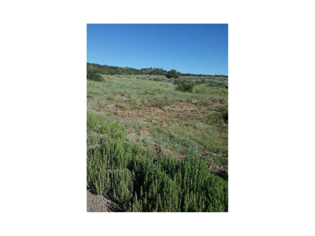 Lot 9 Conejos Trail, Antonito, CO 81120 (#R721838) :: The DeGrood Team
