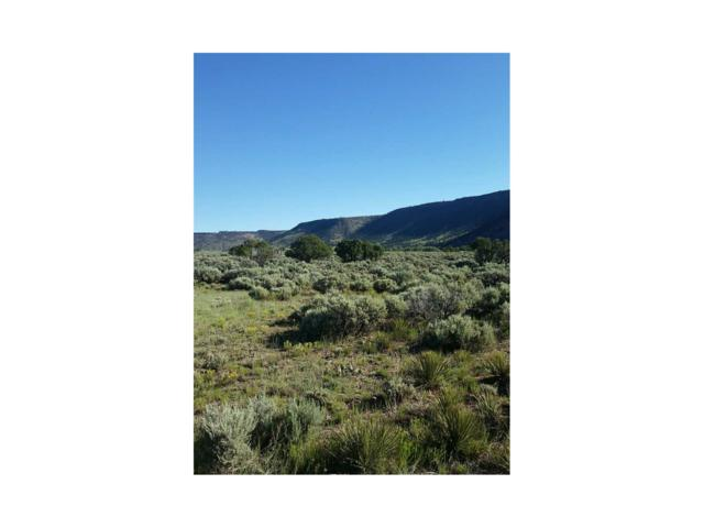 Lot 8 Conejos Trail, Antonito, CO 81120 (#R721842) :: The DeGrood Team