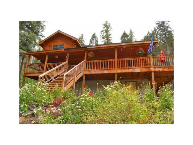 1843 Clarke Mountain Lane, Antonito, CO 81120 (MLS #R724284) :: 8z Real Estate