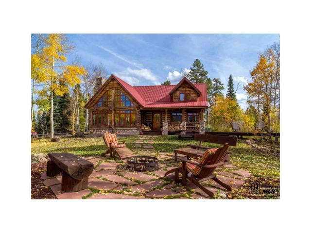 8925 Bearpaw Trail, Yampa, CO 80483 (MLS #S138964) :: 8z Real Estate
