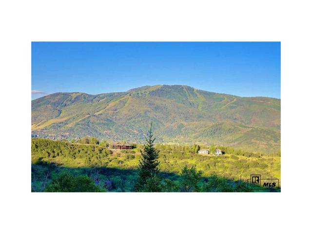 35650 Humble Rd., Steamboat Springs, CO 80487 (MLS #S142122) :: 8z Real Estate