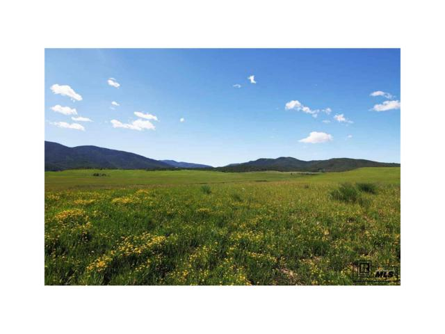 31725 County Road 14C, Steamboat Springs, CO 80487 (#S160488) :: Bring Home Denver with Keller Williams Downtown Realty LLC