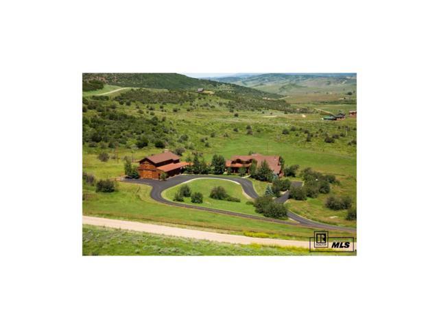 25430 Rainbow Ridge Creek Ranch, Oak Creek, CO 80467 (#S161879) :: Structure CO Group