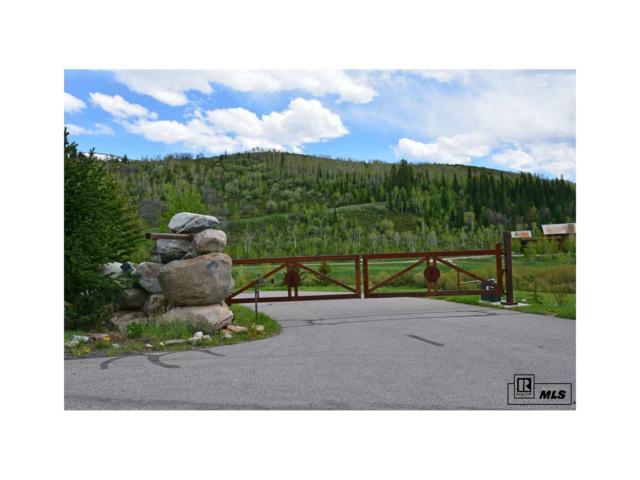 2655 Littlefish Trail, Steamboat Springs, CO 80487 (#S170139) :: The HomeSmiths Team - Keller Williams