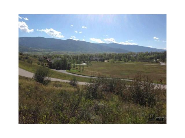35965 Agate Creek Road, Steamboat Springs, CO 80487 (#S170412) :: Bring Home Denver with Keller Williams Downtown Realty LLC